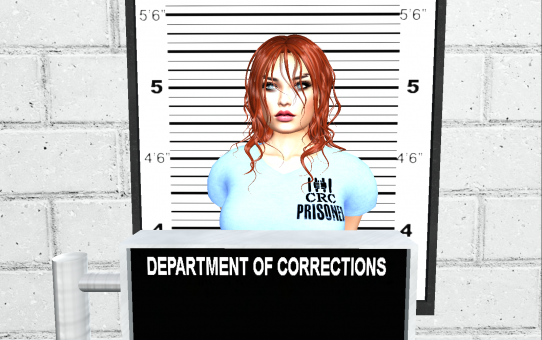 Jailed! – Chapter 1: Arrested